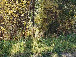 Lot for sale in Lone Butte/Green Lk/Watch Lk, Lone Butte, 100 Mile House, Lot 169 Womack Road, 262591494 | Realtylink.org