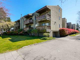 Apartment for sale in West End NW, New Westminster, New Westminster, 123 1202 London Street, 262591131 | Realtylink.org
