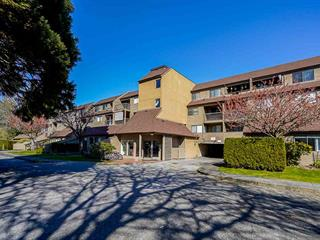 Apartment for sale in Boyd Park, Richmond, Richmond, 322 8120 Colonial Drive, 262590262 | Realtylink.org