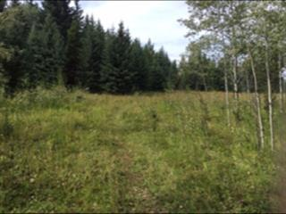 Lot for sale in Bridge Lake/Sheridan Lake, Lone Butte, 100 Mile House, 7672 Larson Road, 262590033 | Realtylink.org