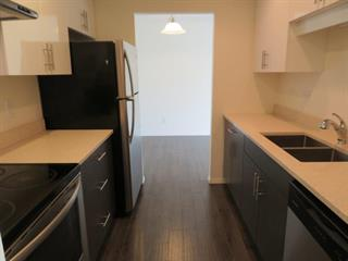 Apartment for rent in Central Coquitlam, Coquitlam, Coquitlam, 407 2915 Geln Drive, 262582456 | Realtylink.org