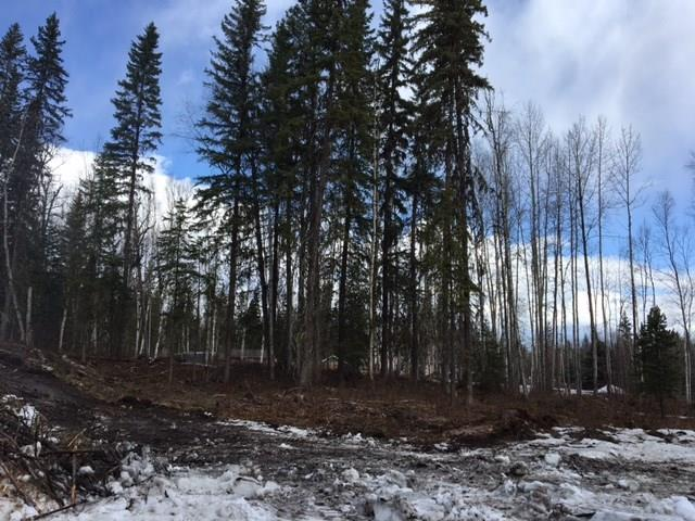 Lot for sale in Quesnel - Rural West, Quesnel, Quesnel, Lot 1 Marsh Road, 262582449 | Realtylink.org
