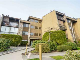 Apartment for sale in Government Road, Burnaby, Burnaby North, 209 9101 Horne Street, 262582886   Realtylink.org