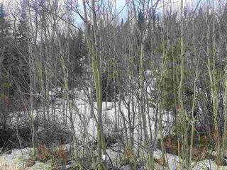 Lot for sale in Hart Highway, Prince George, PG City North, 3079 Hart Highway, 262576923 | Realtylink.org