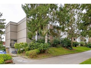 Apartment for sale in Boyd Park, Richmond, Richmond, 201 8720 No. 1 Road, 262586964 | Realtylink.org