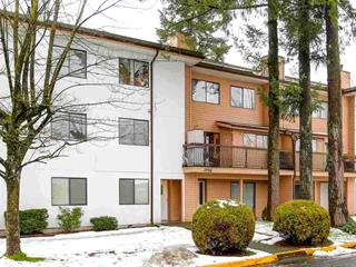 Apartment for sale in West Newton, Surrey, Surrey, 206 13316 71b Avenue, 262481077 | Realtylink.org