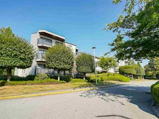 Apartment for sale in Guildford, Surrey, North Surrey, 302 9952 149 Street, 262513873 | Realtylink.org