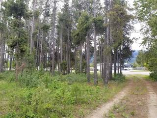 Lot for sale in Valemount - Town, Valemount, Robson Valley, 1406 Bruce Place, 262486441 | Realtylink.org