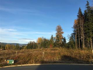 Lot for sale in Kitimat, Kitimat, 20 Robinson Street, 262490816 | Realtylink.org