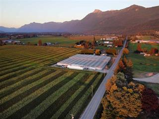 Lot for sale in Rosedale Popkum, Chilliwack, Rosedale, 50265 Chilliwack Central Road, 262518703 | Realtylink.org