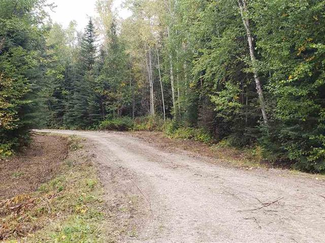 Lot for sale in Ness Lake, Prince George, PG Rural North, Lot 5 Schiffo Road, 262519306 | Realtylink.org