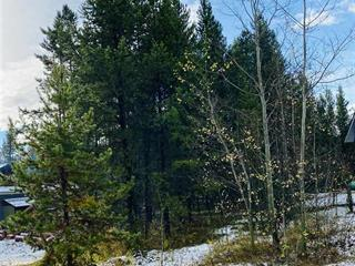 Lot for sale in Valemount - Town, Valemount, Robson Valley, 1145 14th Avenue, 262533225 | Realtylink.org