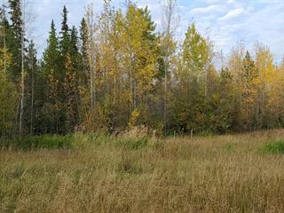 Lot for sale in Hixon, PG Rural South, 41275 Cariboo 97 Highway, 262526741 | Realtylink.org