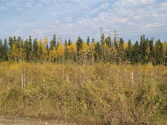 Lot for sale in Quesnel - Rural North, Quesnel, Quesnel, 41348 Quesnel-Hixon Road, 262526734 | Realtylink.org