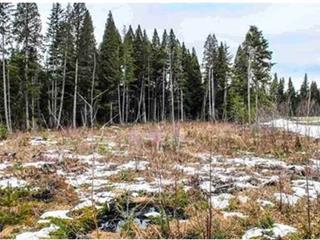 Lot for sale in Kitimat, Kitimat, 72 Blueberry Avenue, 262525331 | Realtylink.org