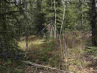 Lot for sale in Nukko Lake, Prince George, PG Rural North, Lot 12 Chief Lake Road, 262447211 | Realtylink.org