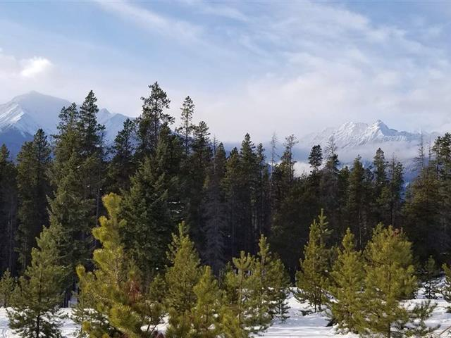 Lot for sale in Valemount - Rural West, Valemount, Robson Valley, Lot 2 N 5 Highway, 262446221 | Realtylink.org