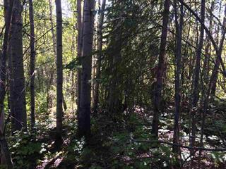 Lot for sale in Fort Nelson - Rural, Fort Nelson, Fort Nelson, 26 Pebble Drive, 262481928 | Realtylink.org