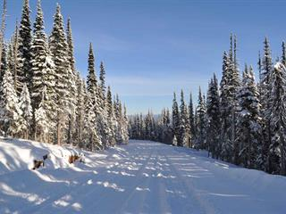 Lot for sale in Smithers - Rural, Smithers, Smithers And Area, 210 Alpine Way, 262475522 | Realtylink.org