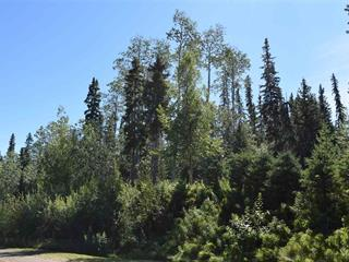 Lot for sale in South Francois, Burns Lake, Burns Lake, Blocks S,T,U Indian Bay Road, 262529802 | Realtylink.org