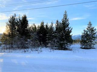 Lot for sale in Valemount - Town, Valemount, Robson Valley, 1025 9th Avenue, 262548261 | Realtylink.org