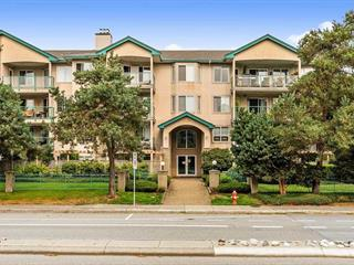 Apartment for sale in Langley City, Langley, Langley, 407 20443 53 Avenue, 262456473 | Realtylink.org
