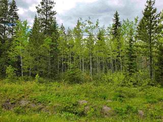 Lot for sale in Blackwater, Prince George, PG Rural West, Lot 7 Hughes Road, 262484203 | Realtylink.org