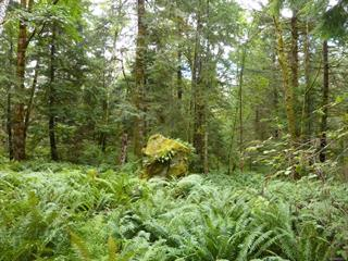 Lot for sale in Quadra Island, Quadra Island, SL 6 950 Heriot Bay Rd, 852433 | Realtylink.org