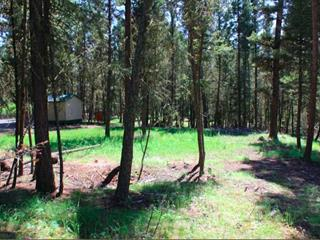 Lot for sale in 108 Ranch, 108 Mile Ranch, 100 Mile House, 4890 Gloinnzun Drive, 262515485 | Realtylink.org