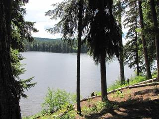 Recreational Property for sale in Horsefly, Williams Lake, 2255 McKinley Forest Service Road, 262514208 | Realtylink.org