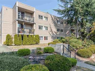 Apartment for sale in Central Coquitlam, Coquitlam, Coquitlam, 206 1121 Howie Avenue, 262519236 | Realtylink.org