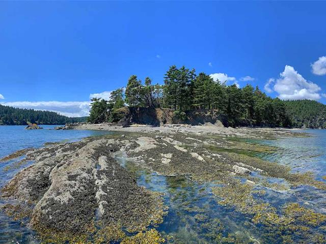 House for sale in Pender Island, Islands-Van. & Gulf, 6601 Razor Point Road, 262482616   Realtylink.org