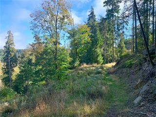 Lot for sale in Gabriola Island (Vancouver Island), Gabriola Island (Vancouver Island), 0 Spruce Ave, 858022 | Realtylink.org