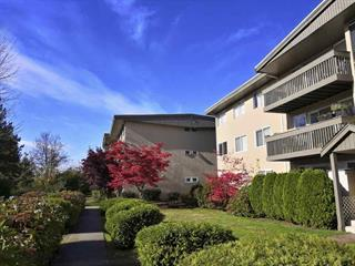 Apartment for sale in Capitol Hill BN, Burnaby, Burnaby North, 46 5810 Hastings Street, 262507384 | Realtylink.org