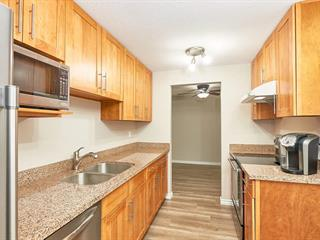 Apartment for sale in Brighouse South, Richmond, Richmond, 164 7293 Moffatt Road, 262528340   Realtylink.org