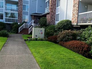 Apartment for sale in Langley City, Langley, Langley, 112 5379 205 Street, 262529496 | Realtylink.org