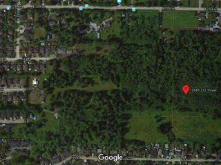 Lot for sale in East Central, Maple Ridge, Maple Ridge, 12685 232nd Street, 262458901   Realtylink.org