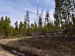 Lot for sale in Williams Lake - Rural West, Williams Lake, Williams Lake, Dl 1769 20 Highway, 262461180 | Realtylink.org
