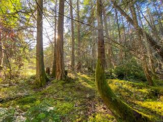 Lot for sale in Gabriola Island (Vancouver Island), Gabriola Island (Vancouver Island), Lt 2 South Rd, 858957 | Realtylink.org