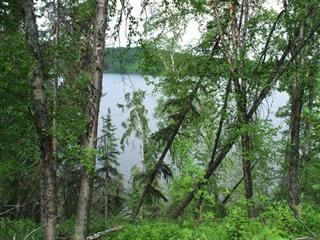 Lot for sale in South Francois, Burns Lake, Burns Lake, Dl 459 Tatalrose Road, 262274743 | Realtylink.org