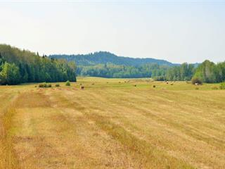 Agri-Business for sale in Vanderhoof - Rural, Vanderhoof, Vanderhoof And Area, 38047 Sturgeon Point Road, 224940277 | Realtylink.org