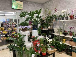Business for sale in Renfrew Heights, Vancouver, Vancouver East, 4280 Slocan Street, 224936449 | Realtylink.org