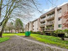 Apartment for sale in Brighouse, Richmond, Richmond, 203 8720 Lansdowne Road, 262445296 | Realtylink.org