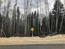 Lot for sale in Valemount - Town, Valemount, Robson Valley, 1015 18th Avenue, 262385906 | Realtylink.org