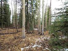 Lot for sale in Deka/Sulphurous/Hathaway Lakes, Deka Lake / Sulphurous / Hathaway Lakes, 100 Mile House, Lot 209 Ingento Road, 262314287 | Realtylink.org