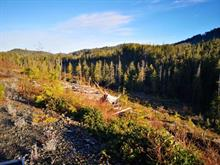 Lot for sale in Port Hardy, Port Hardy,  Holberg Road, 455831 | Realtylink.org