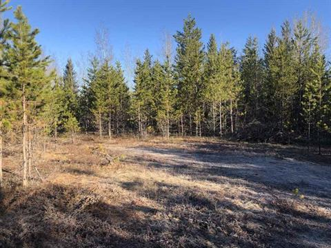 Lot for sale in Bouchie Lake, Quesnel, Quesnel, 517 Yetta Road, 262397097   Realtylink.org