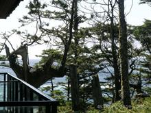 Apartment for sale in Ucluelet, PG Rural East, 596 Marine Drive, 453326   Realtylink.org
