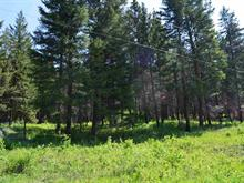 Lot for sale in Williams Lake - Rural North, Williams Lake, Williams Lake, 5193 Mountain House Road, 262396720 | Realtylink.org