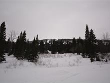 Lot for sale in Mackenzie - Rural, Mackenzie, Mackenzie, Lot 4 Powder King Sub, 262287016 | Realtylink.org